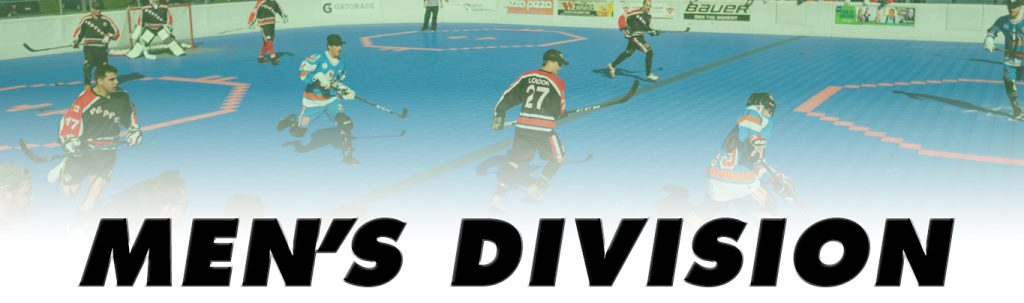 mens ball hockey league
